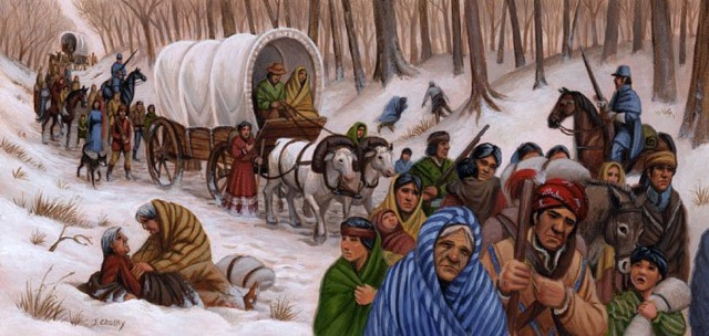 achievements of Andrew Jackson Indian Removal Act - The Trail of Tears