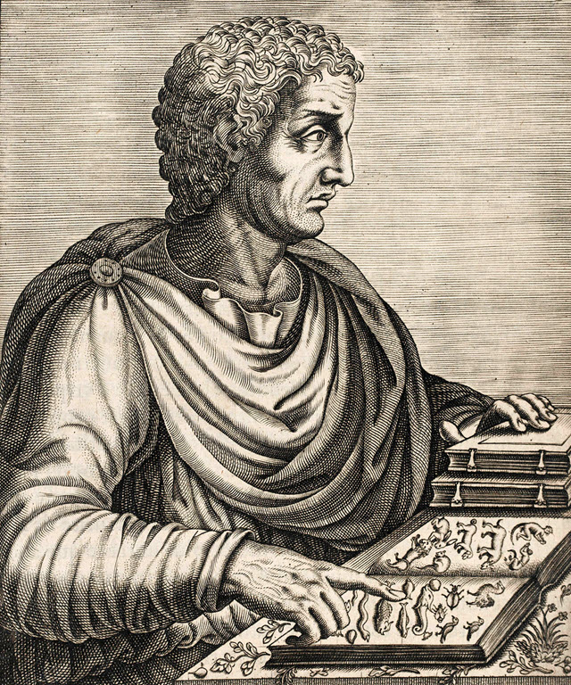 Roman Philosopher Pliny the Elder