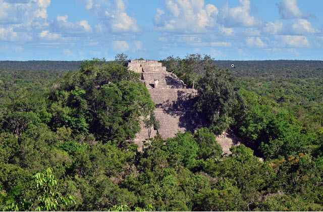 Calakmul - a monument in Mexico