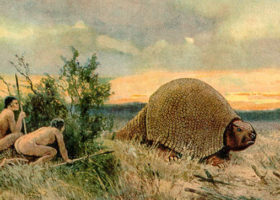 An image from Paleolithic Period